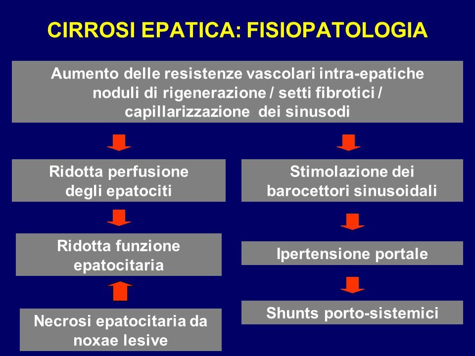 CIRROSI EPATICA: FISIOPATOLOGIA Aumento delle resistenze vascolari intra-epatiche noduli di rigenerazione / setti fibrotici / capillarizzazione dei si