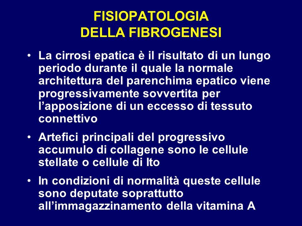 FISIOPATOLOGIA DELLA FIBROGENESI La cirrosi epatica è il risultato di un lungo periodo durante il quale la normale architettura del parenchima epatico