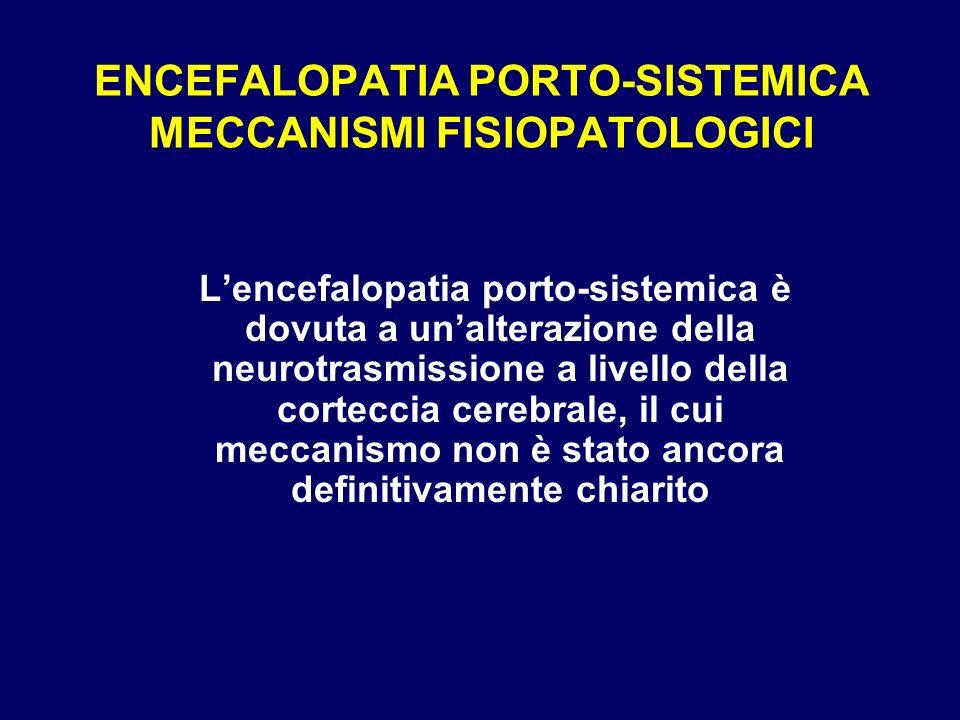 ENCEFALOPATIA PORTO-SISTEMICA MECCANISMI FISIOPATOLOGICI Lencefalopatia porto-sistemica è dovuta a unalterazione della neurotrasmissione a livello del