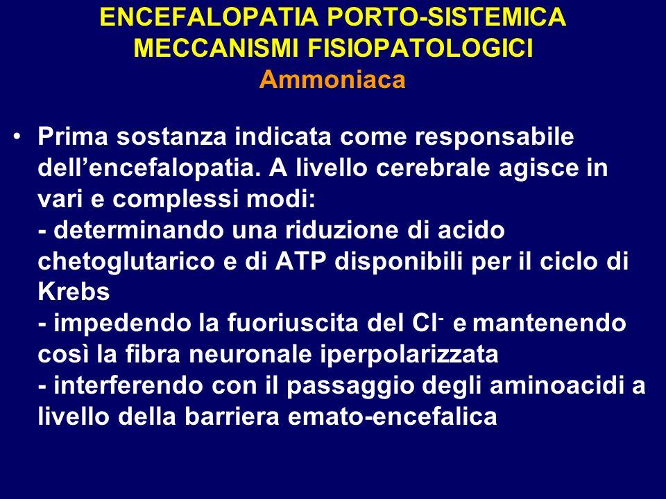 ENCEFALOPATIA PORTO-SISTEMICA MECCANISMI FISIOPATOLOGICI Ammoniaca Prima sostanza indicata come responsabile dellencefalopatia. A livello cerebrale ag