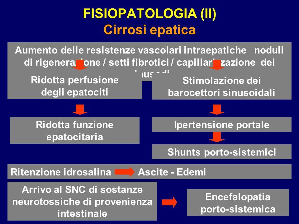 FISIOPATOLOGIA (II) Cirrosi epatica Aumento delle resistenze vascolari intraepatiche noduli di rigenerazione / setti fibrotici / capillarizzazione dei