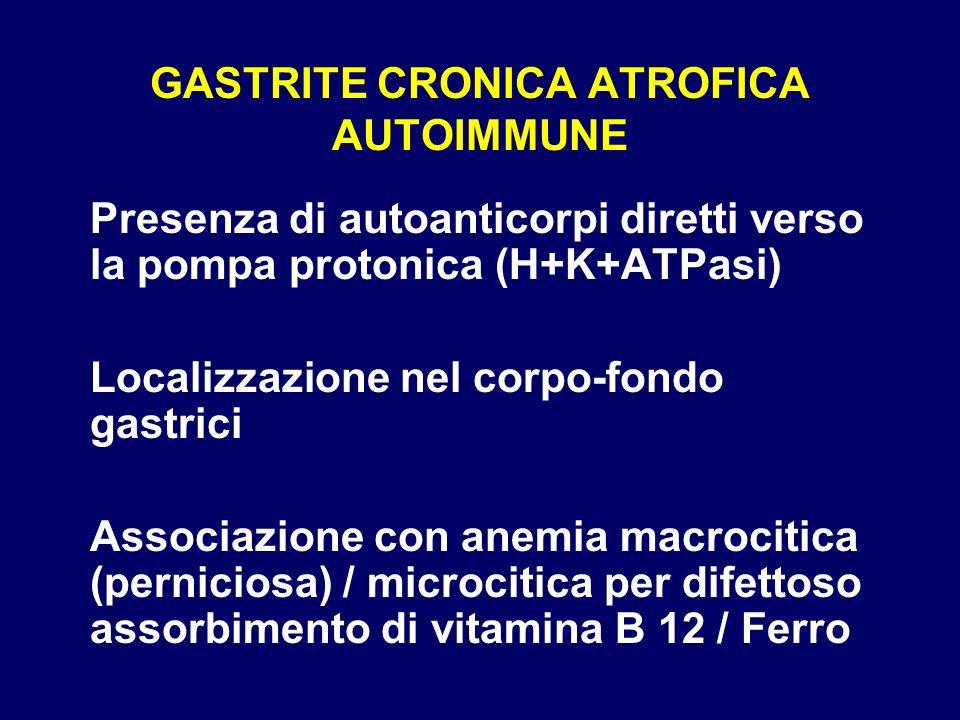 GASTRITE CRONICA ATROFICA AUTOIMMUNE Presenza di autoanticorpi diretti verso la pompa protonica (H+K+ATPasi) Localizzazione nel corpo-fondo gastrici A