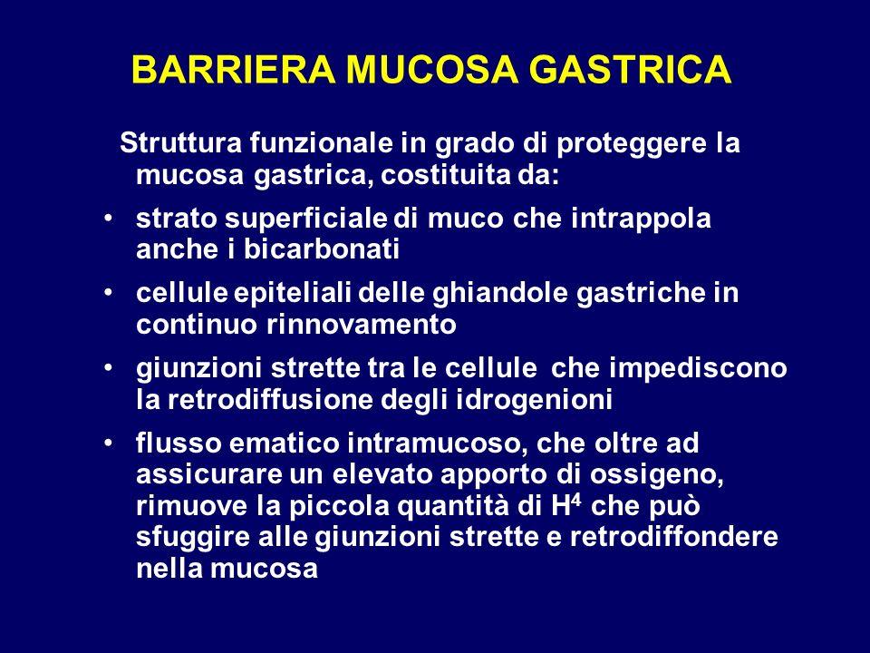 BARRIERA MUCOSA GASTRICA Struttura funzionale in grado di proteggere la mucosa gastrica, costituita da: strato superficiale di muco che intrappola anc