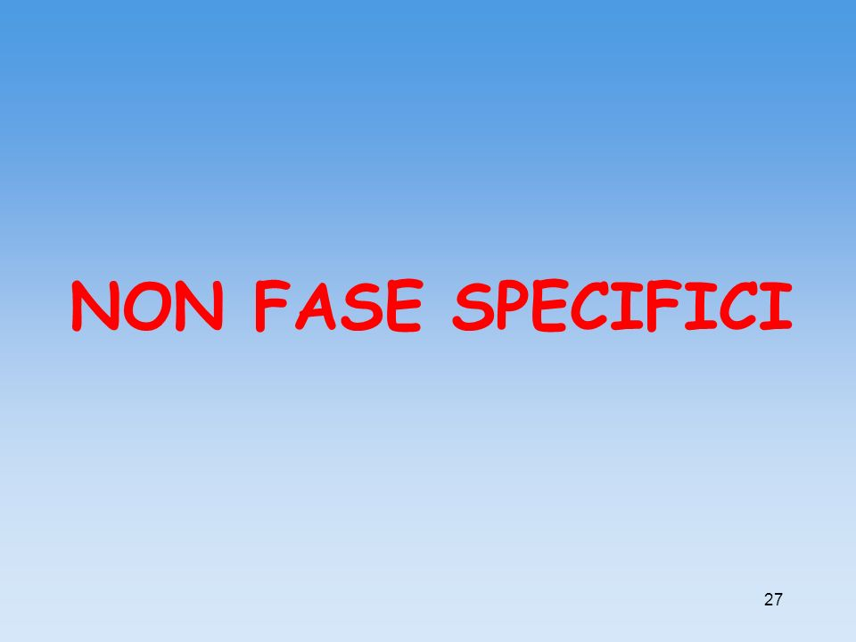 NON FASE SPECIFICI 27