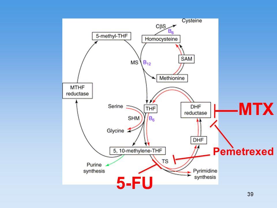 MTX Pemetrexed 5-FU 39