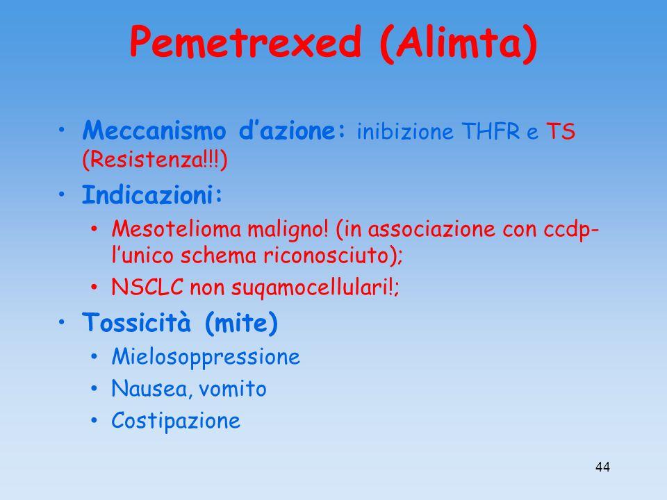 Pemetrexed (Alimta) Meccanismo dazione: inibizione THFR e TS (Resistenza!!!) Indicazioni: Mesotelioma maligno! (in associazione con ccdp- lunico schem