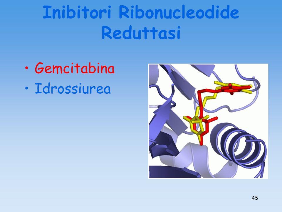 Inibitori Ribonucleodide Reduttasi Gemcitabina Idrossiurea 45