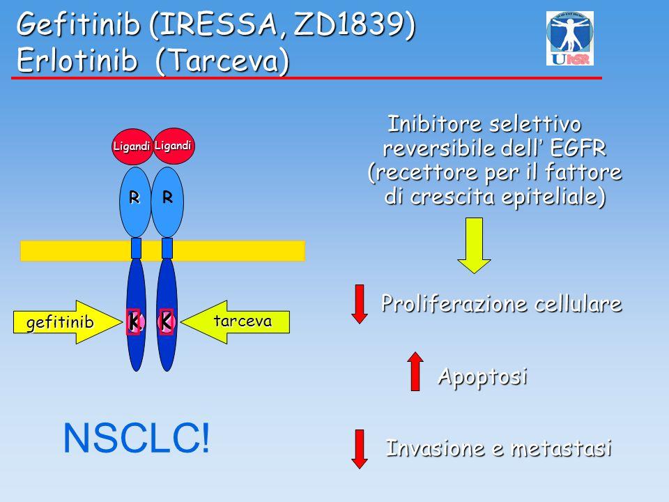 K R K R tarceva gefitinib Ligandi Ligandi Gefitinib (IRESSA, ZD1839) Erlotinib (Tarceva) Gefitinib (IRESSA, ZD1839) Erlotinib (Tarceva) Inibitore sele