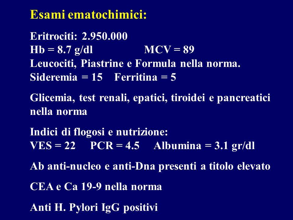 Esami ematochimici: Eritrociti: 2.950.000 Hb = 8.7 g/dl MCV = 89 Leucociti, Piastrine e Formula nella norma.