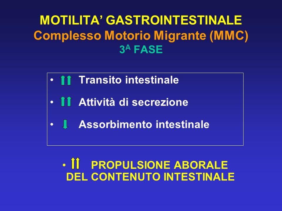 MOTILITA GASTROINTESTINALE Complesso Motorio Migrante (MMC) 3 A FASE Transito intestinale Attività di secrezione Assorbimento intestinale PROPULSIONE