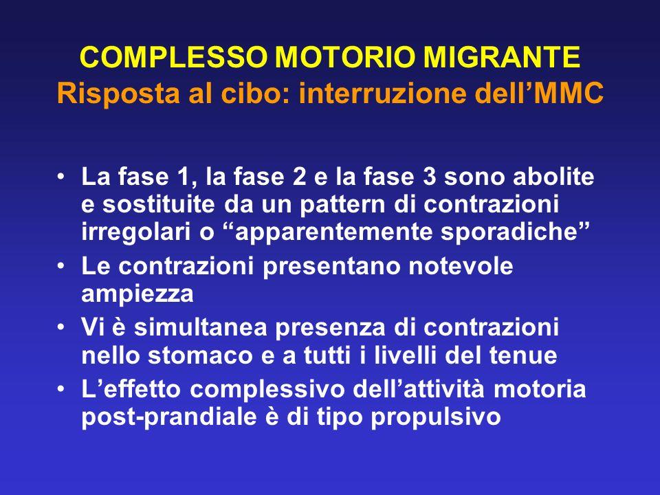 COMPLESSO MOTORIO MIGRANTE Risposta al cibo: interruzione dellMMC La fase 1, la fase 2 e la fase 3 sono abolite e sostituite da un pattern di contrazi