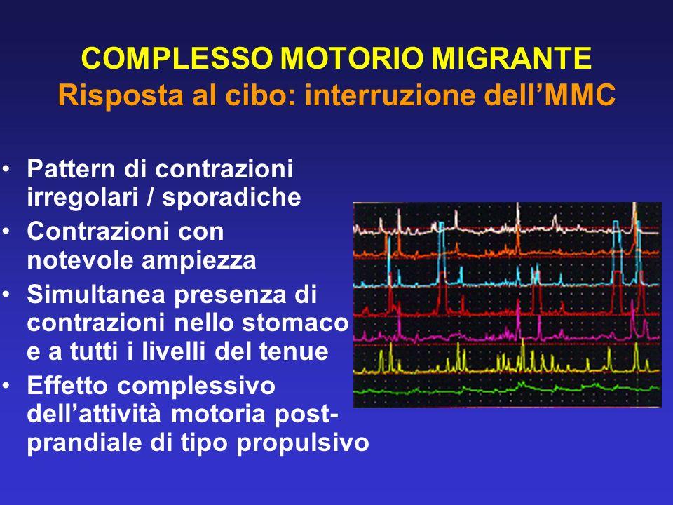 COMPLESSO MOTORIO MIGRANTE Risposta al cibo: interruzione dellMMC Pattern di contrazioni irregolari / sporadiche Contrazioni con notevole ampiezza Sim