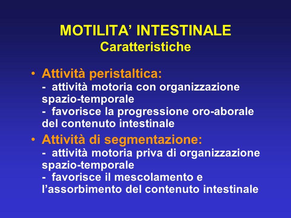 MOTILITA INTESTINALE Caratteristiche Attività peristaltica: - attività motoria con organizzazione spazio-temporale - favorisce la progressione oro-abo