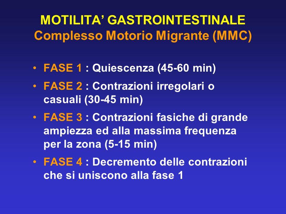 MOTILITA GASTROINTESTINALE Complesso Motorio Migrante (MMC) FASE 1 : Quiescenza (45-60 min) FASE 2 : Contrazioni irregolari o casuali (30-45 min) FASE