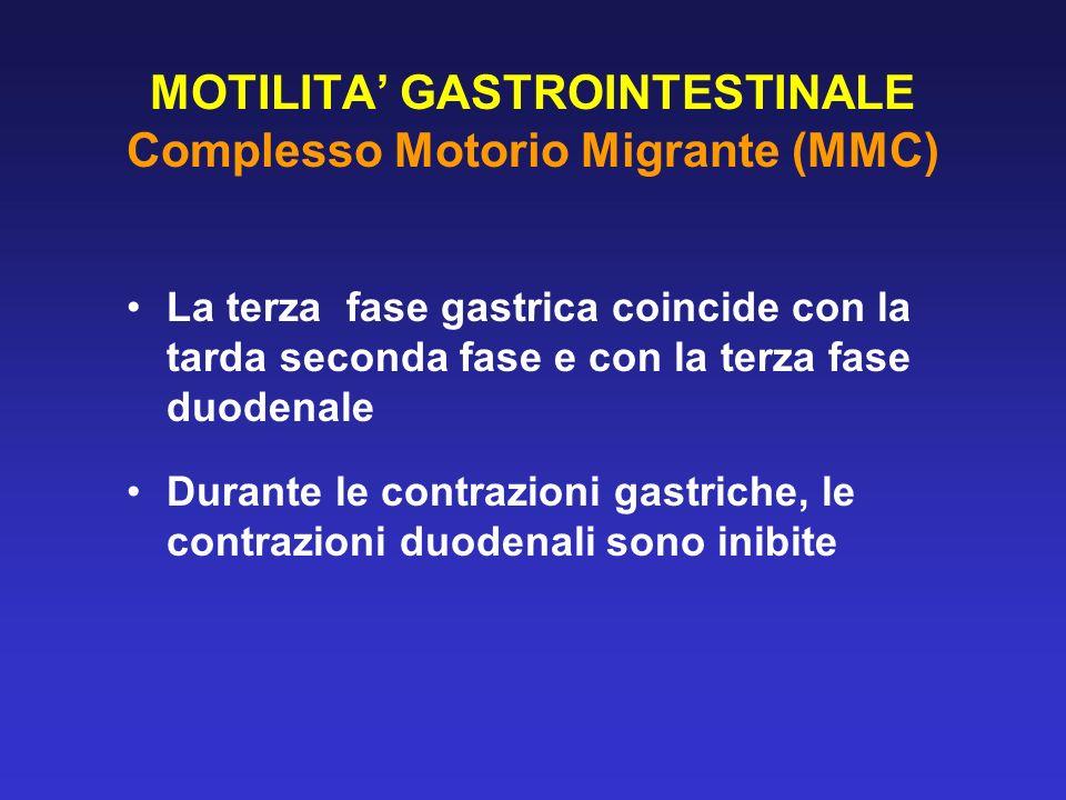 MOTILITA GASTROINTESTINALE Complesso Motorio Migrante (MMC) La terza fase gastrica coincide con la tarda seconda fase e con la terza fase duodenale Du