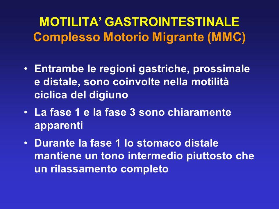 MOTILITA GASTROINTESTINALE Complesso Motorio Migrante (MMC) Entrambe le regioni gastriche, prossimale e distale, sono coinvolte nella motilità ciclica