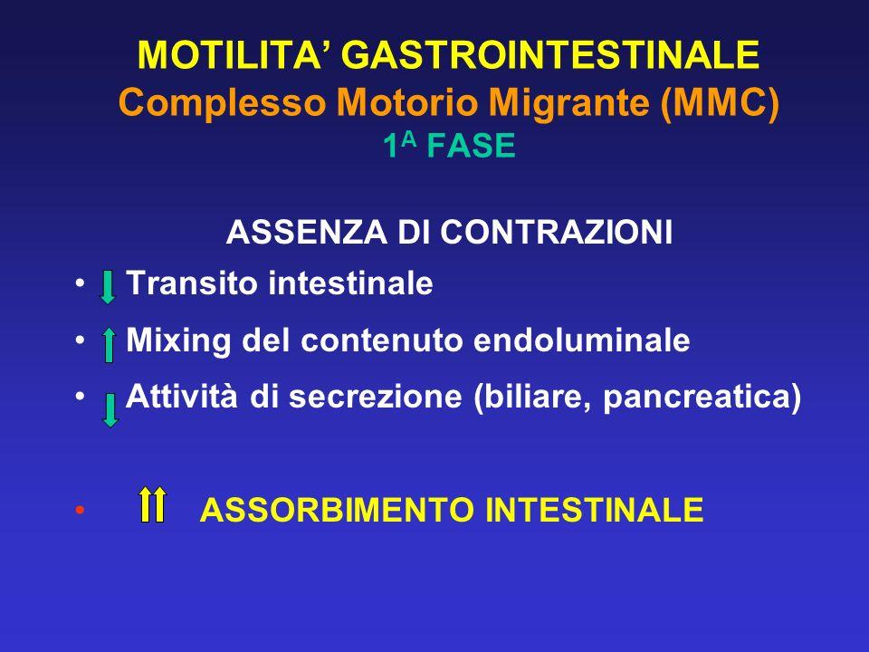 MOTILITA GASTROINTESTINALE Complesso Motorio Migrante (MMC) 1 A FASE ASSENZA DI CONTRAZIONI Transito intestinale Mixing del contenuto endoluminale Att