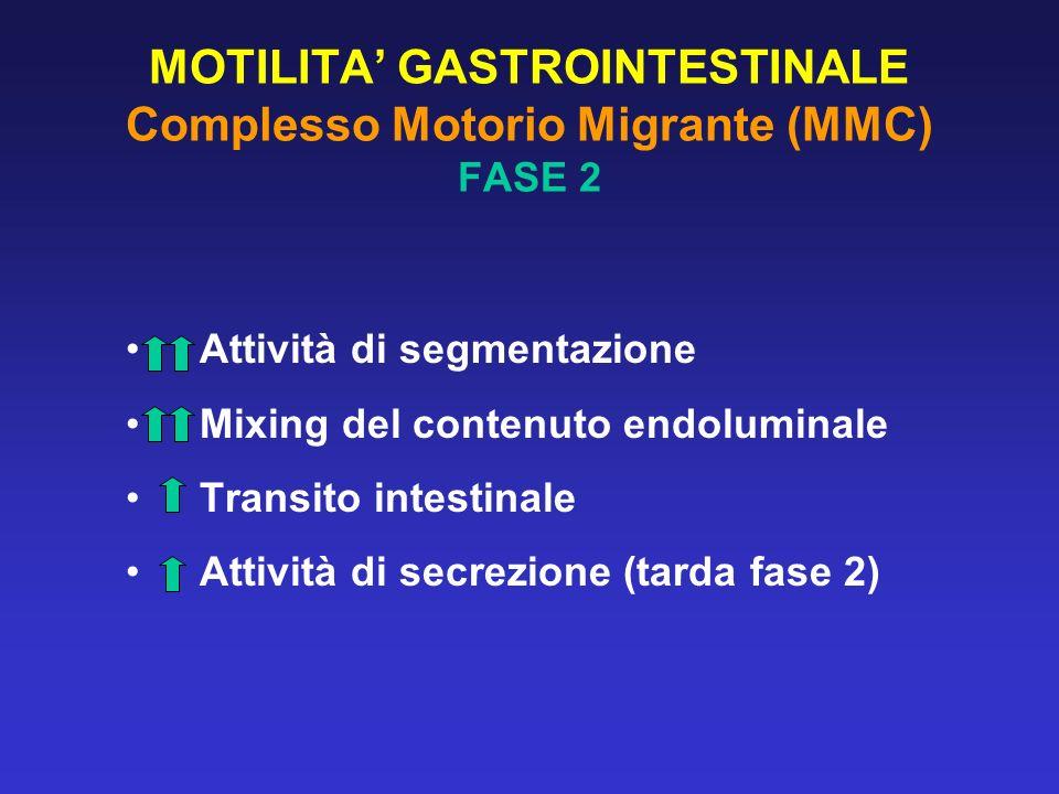 MOTILITA GASTROINTESTINALE Complesso Motorio Migrante (MMC) FASE 2 Attività di segmentazione Mixing del contenuto endoluminale Transito intestinale At