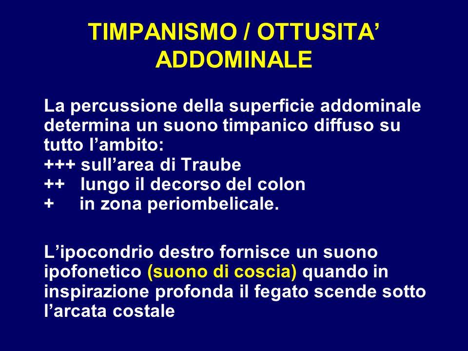 TIMPANISMO / OTTUSITA ADDOMINALE La percussione della superficie addominale determina un suono timpanico diffuso su tutto lambito: +++ sullarea di Tra