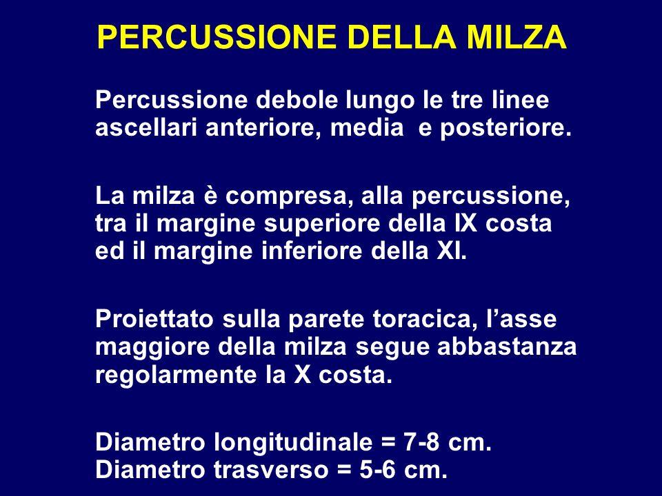 PERCUSSIONE DELLA MILZA Percussione debole lungo le tre linee ascellari anteriore, media e posteriore. La milza è compresa, alla percussione, tra il m
