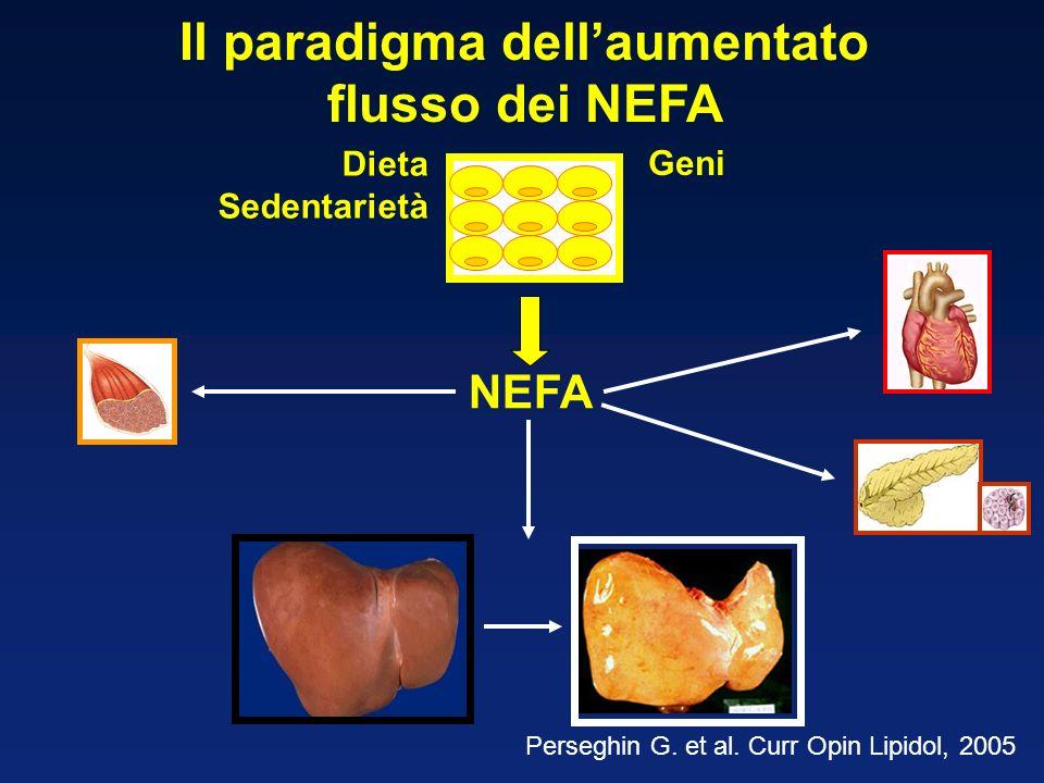NEFA Il paradigma dellaumentato flusso dei NEFA Perseghin G.