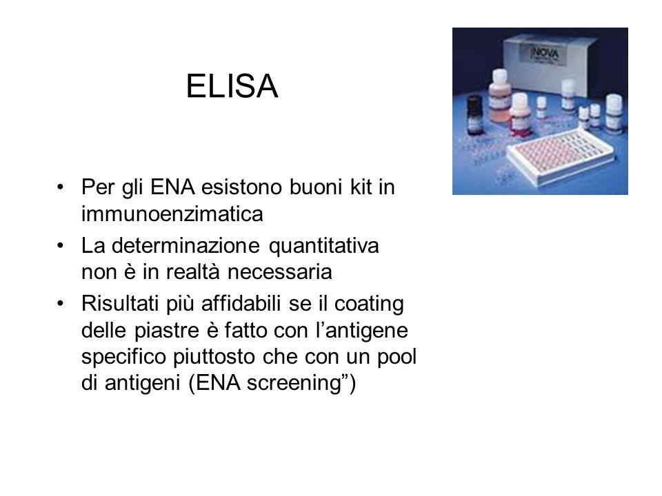 ELISA Per gli ENA esistono buoni kit in immunoenzimatica La determinazione quantitativa non è in realtà necessaria Risultati più affidabili se il coat