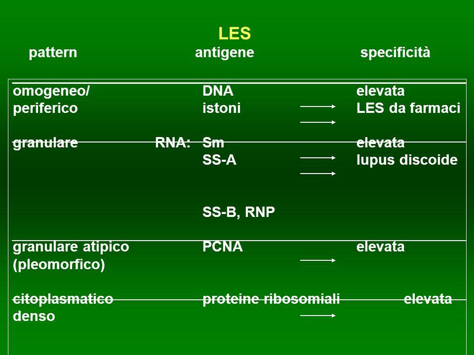 LES pattern antigenespecificità omogeneo/ DNA elevata periferico istoni LES da farmaci granulare RNA:Sm elevata SS-A lupus discoide SS-B, RNP granular