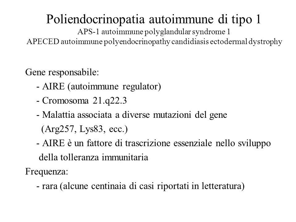Poliendocrinopatia autoimmune di tipo 1 APS-1 autoimmune polyglandular syndrome 1 APECED autoimmune polyendocrinopathy candidiasis ectodermal dystroph