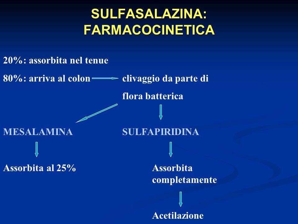 SULFASALAZINA: FARMACOCINETICA 20%: assorbita nel tenue 80%: arriva al colonclivaggio da parte di flora batterica MESALAMINASULFAPIRIDINA Assorbita al