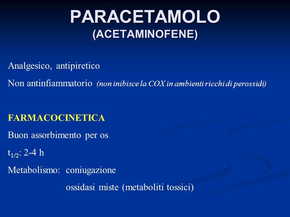 PARACETAMOLO (ACETAMINOFENE) Analgesico, antipiretico Non antinfiammatorio (non inibisce la COX in ambienti ricchi di perossidi) FARMACOCINETICA Buon