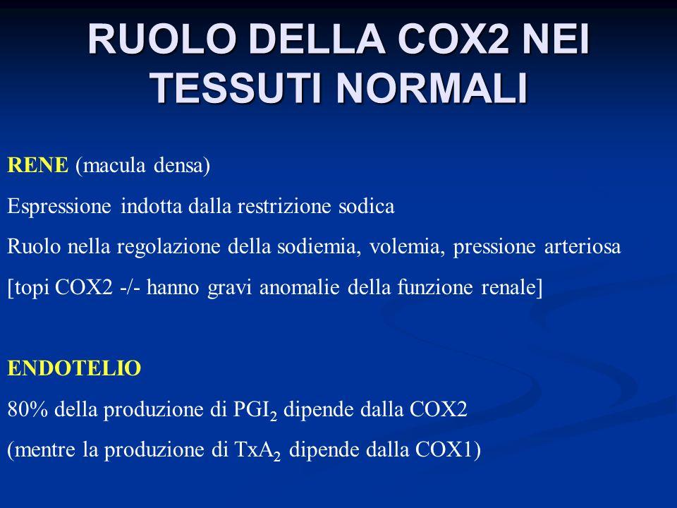 RUOLO DELLA COX2 NEI TESSUTI NORMALI RENE (macula densa) Espressione indotta dalla restrizione sodica Ruolo nella regolazione della sodiemia, volemia,