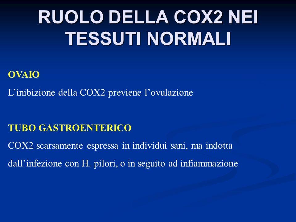 RUOLO DELLA COX2 NEI TESSUTI NORMALI OVAIO Linibizione della COX2 previene lovulazione TUBO GASTROENTERICO COX2 scarsamente espressa in individui sani