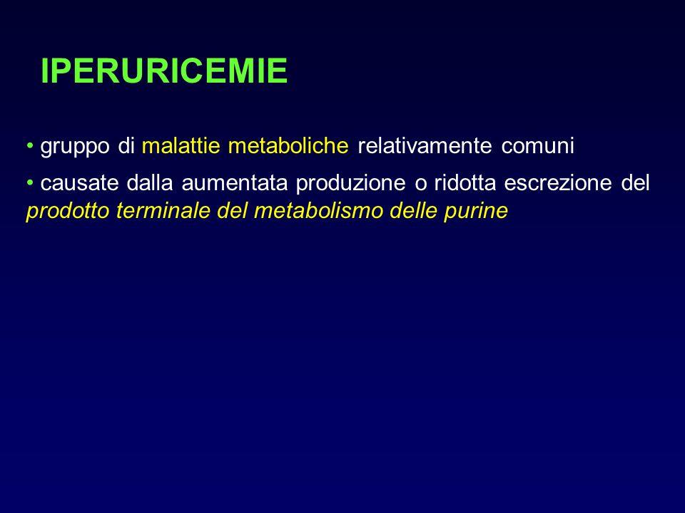 PURINE Le purine sono basi (adenina e guanina) che sono legate a zuccheri (ribosio e deossiribosio) e gruppi fosfato, per svolgere importanti funzioni legate alla replicazione del materiale genetico, trascrizione genica, sintesi proteica e metabolismo cellulare: creano acidi nucleici incorporati in DNA ed RNA partecipano al metabolismo energetico (ATP) partecipano al signaling intracellulare (GMP) partecipano alla comunicazione tra cellule (adenosina)