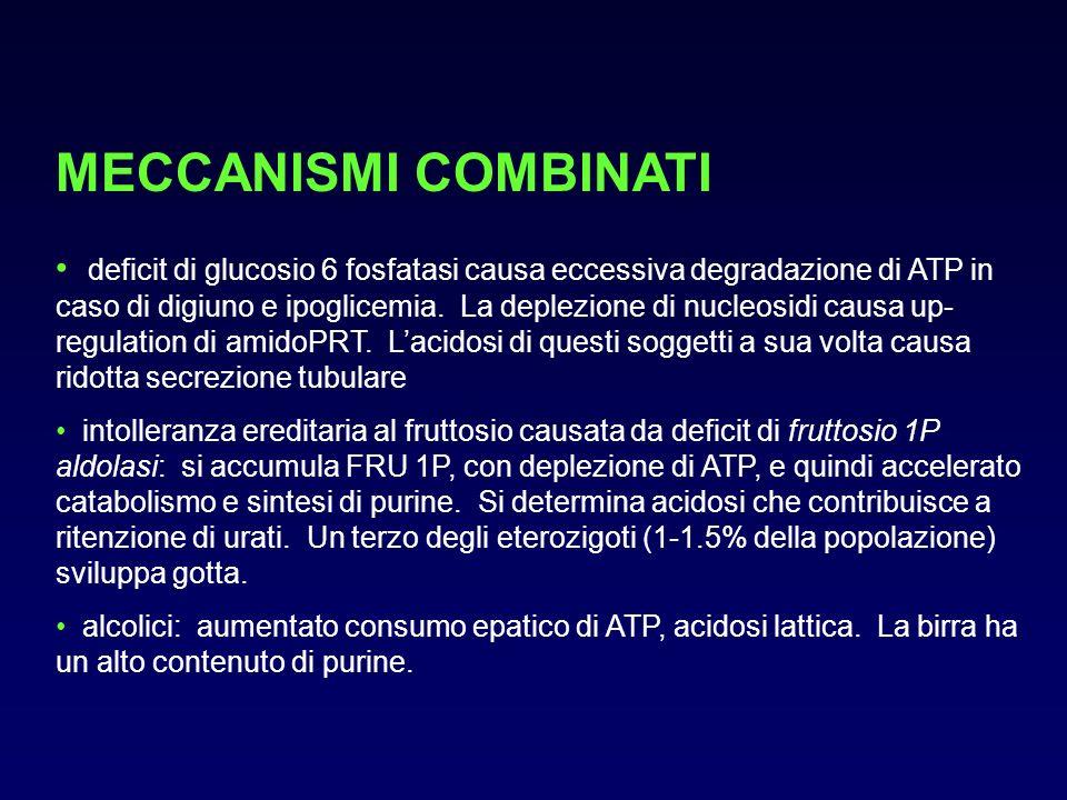 MECCANISMI COMBINATI deficit di glucosio 6 fosfatasi causa eccessiva degradazione di ATP in caso di digiuno e ipoglicemia. La deplezione di nucleosidi