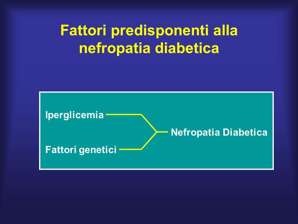 Fattori predisponenti alla nefropatia diabetica Iperglicemia Fattori genetici Nefropatia Diabetica