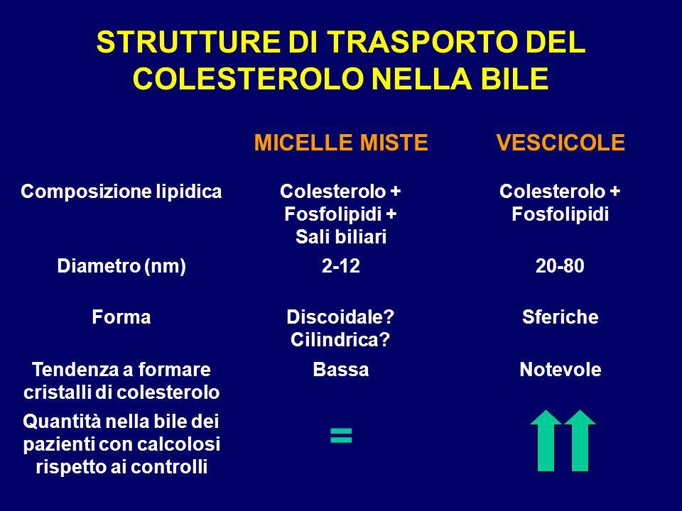 LITIASI BILIARE COLESTEROLICA Vescicole Micelle Cristalli di colesterolo monoidrato Colesterolo non solubilizzato