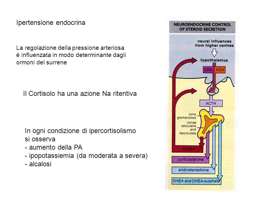 La regolazione della pressione arteriosa è influenzata in modo determinante dagli ormoni del surrene Il Cortisolo ha una azione Na ritentiva Ipertensi