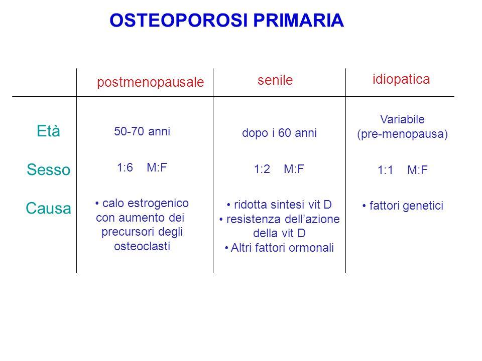 OSTEOPOROSI PRIMARIA postmenopausale senile Età Sesso Causa 50-70 anni 1:6 M:F calo estrogenico con aumento dei precursori degli osteoclasti dopo i 60