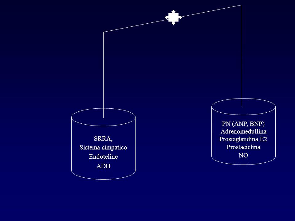SRRA, Sistema simpatico Endoteline ADH PN (ANP, BNP) Adrenomedullina Prostaglandina E2 Prostaciclina NO