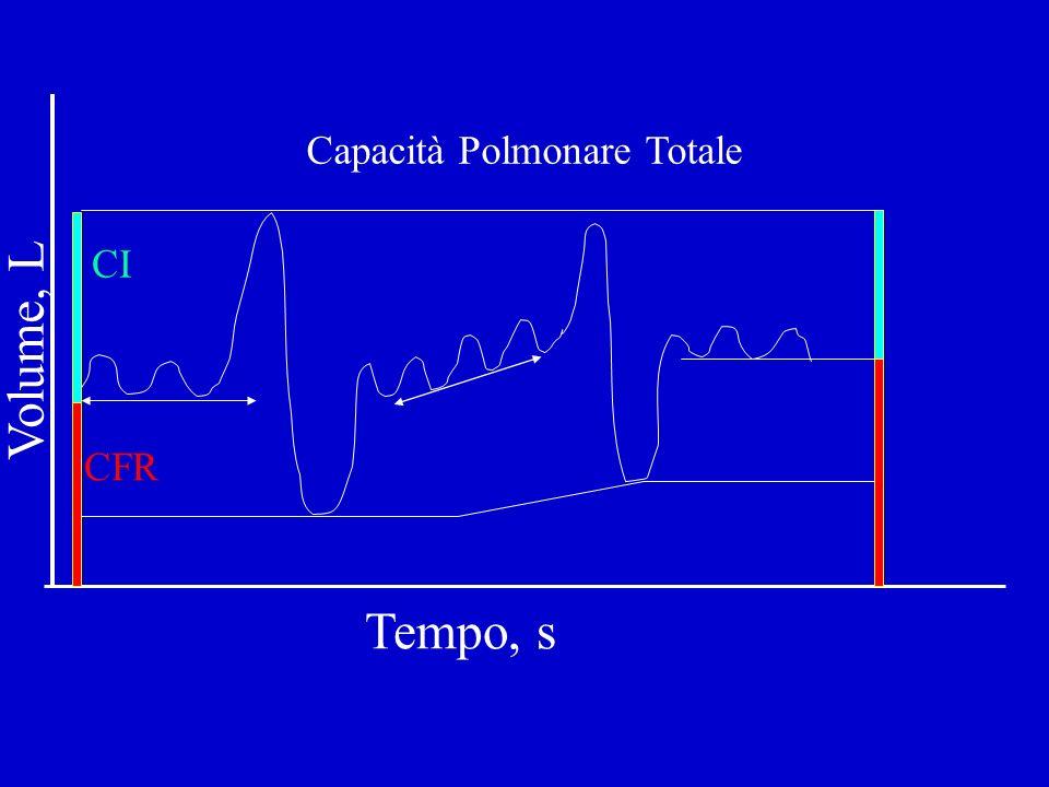 Capacità Polmonare Totale CI CFR Tempo, s Volume, L