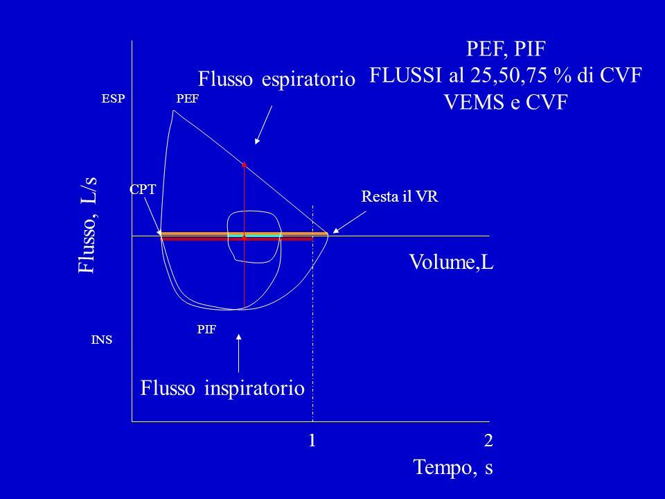 Flusso, L/s Volume,L Tempo, s 12 PEF, PIF FLUSSI al 25,50,75 % di CVF VEMS e CVF Resta il VR CPT Flusso inspiratorio Flusso espiratorio PEF PIF INS ES