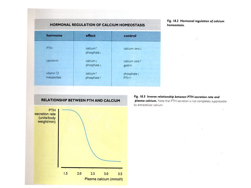 Pseudoipoparatiroidismo: condizione di resistenza allazione del PTH Tipo IA coesistenza con ipotiroidismo ed ipogonadismo Tipo IB senza alterazioni somatiche resistenza isolata allazione del PTH Quadro biochimico: ipocalcemia ed iperfosforemia con PTH elevato