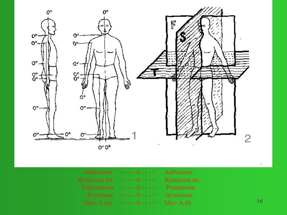 16 Estensione Flessione Abduzione Adduzione Rotazione int. Rotazione est. Supinazione Pronazione Eversione Inversione Mov. A sin. Mov. A dx