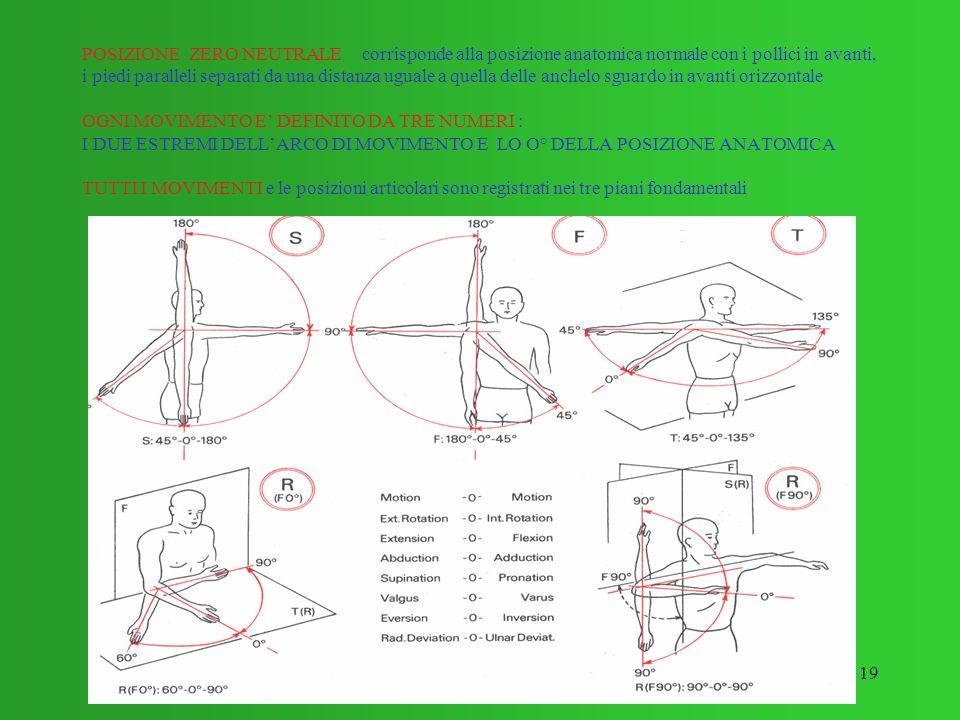 19 POSIZIONE ZERO NEUTRALE corrisponde alla posizione anatomica normale con i pollici in avanti, i piedi paralleli separati da una distanza uguale a q