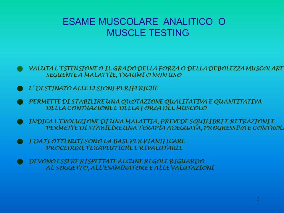 4 Il test inizia con Il BILANCIO VISIVO ACCURATO DEL MUSCOLO Lesaminatore osserva: Lassenza o meno di pliche cutanee La salienza o meno dei tendini La variazione di volume della parte carnosa del muscolo