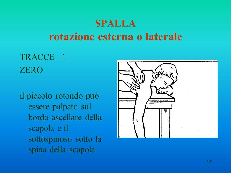 33 SPALLA rotazione esterna o laterale TRACCE 1 ZERO il piccolo rotondo può essere palpato sul bordo ascellare della scapola e il sottospinoso sotto l