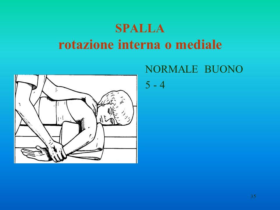 35 SPALLA rotazione interna o mediale NORMALE BUONO 5 - 4