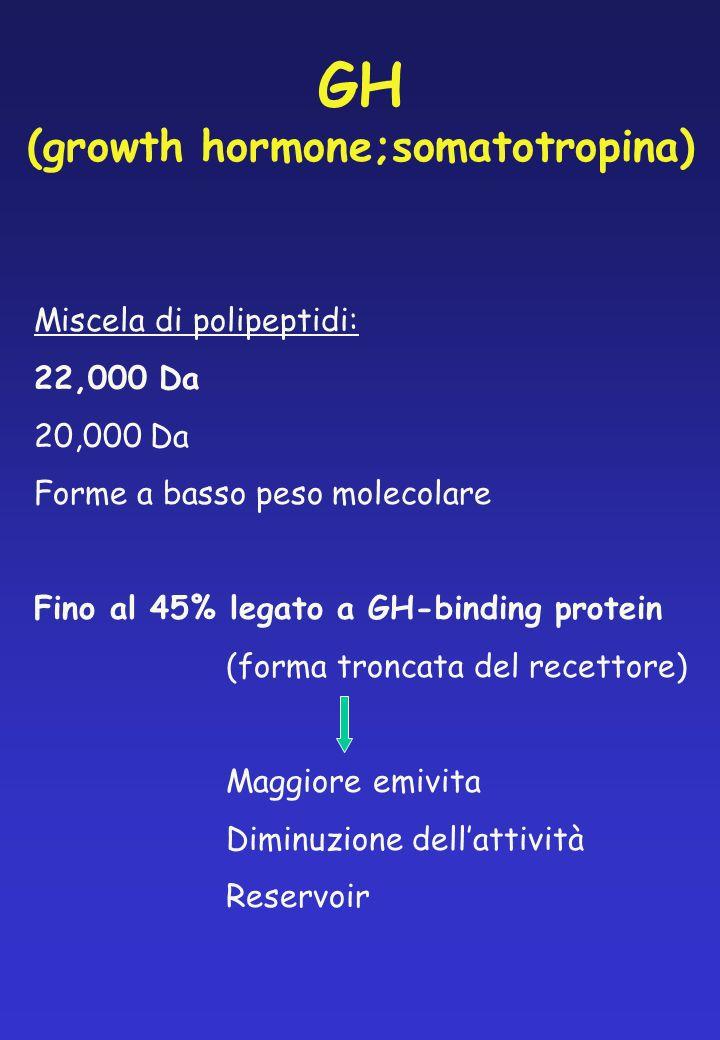 GH (growth hormone;somatotropina) Miscela di polipeptidi: 22,000 Da 20,000 Da Forme a basso peso molecolare Fino al 45% legato a GH-binding protein (f