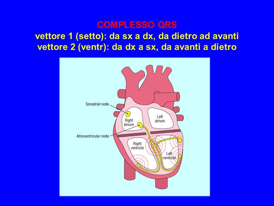 COMPLESSO QRS vettore 1 (setto): da sx a dx, da dietro ad avanti vettore 2 (ventr): da dx a sx, da avanti a dietro