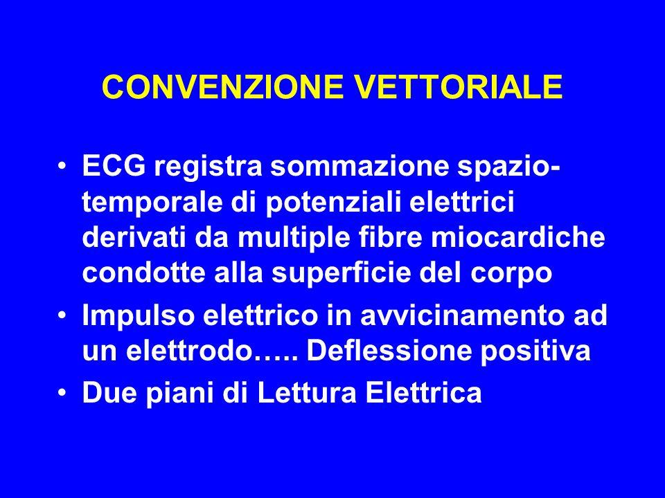 CONVENZIONE VETTORIALE ECG registra sommazione spazio- temporale di potenziali elettrici derivati da multiple fibre miocardiche condotte alla superfic